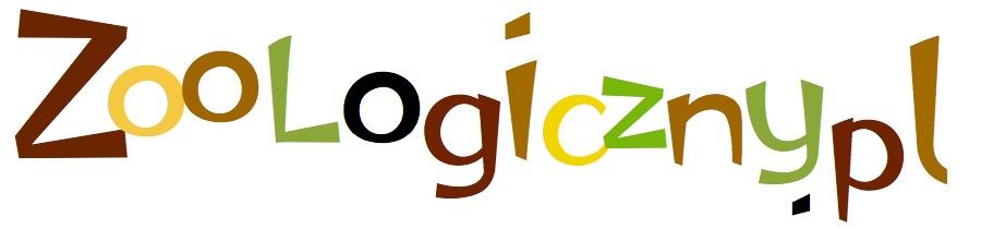 Kolorowe logo zoologiczny.pl